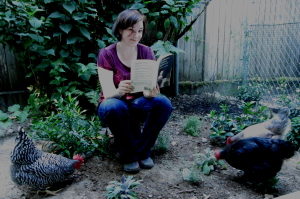 Author Kelly Jones reading the Hoboken Chicken Emergency by Daniel Pinkwater to her chickens.